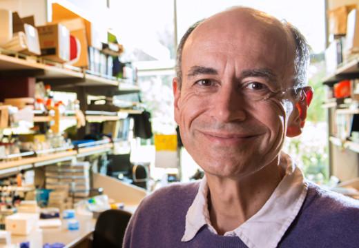 ULÛM entrevista al Premio Nobel de Medicina Thomas C. Südhof