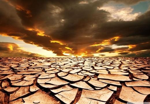 Homo Problematicus I: Desertificación