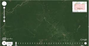 Zona del Amazonas brasileño en 1984