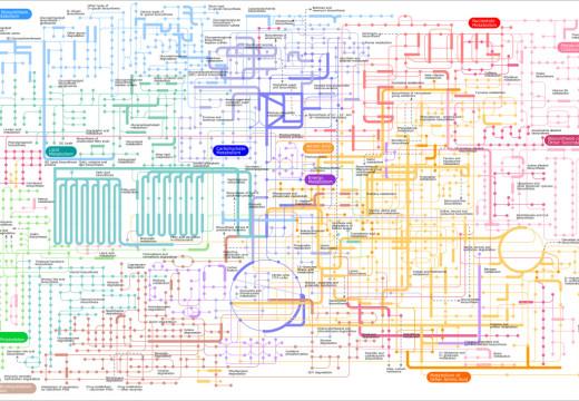 Microbiota y metabolismo, una estrecha relación