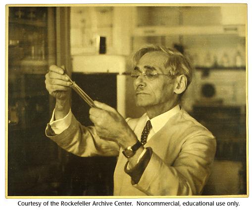 Historia de la biología molecular: Phoebus Levene
