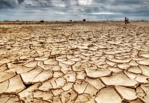 Desgranando la sequía