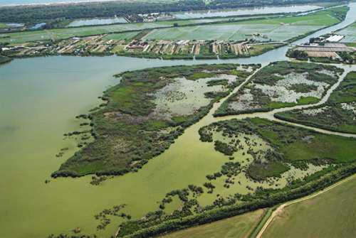 Imagen aérea de la Albufera de Valencia