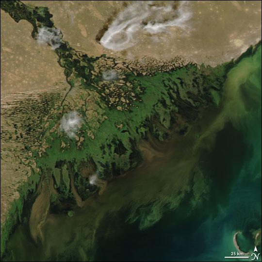 La desembocadura del río Volga en el Mar Caspio presenta una gran eutrofización debido a la agricultura intensiva que la URSS inicio en la zona. Ahora el verde de las algas se ven desde los satélites.
