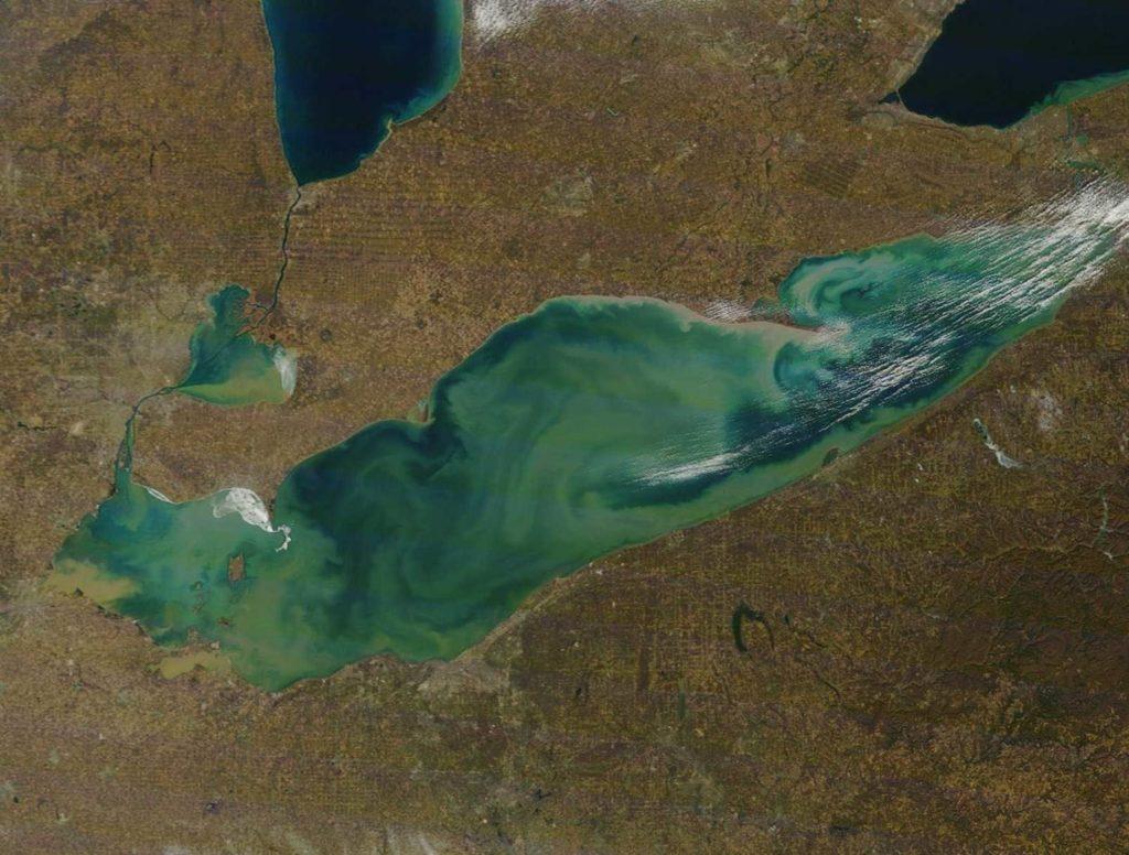 Imagen satelital del lago Erie, en la frontera entre Estados Unidos y Canadá. Este lago junto al resto de los Grandes Lagos están rodeados de grandes ciudades como Detroit, Chicago o Toronto, así como de grandes complejos industriales. En la imagen se aprecia el color verdoso que le aportan las algas.